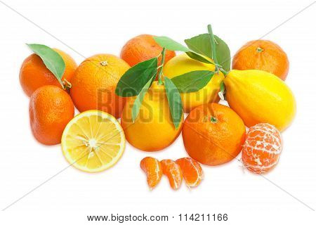 Several Mandarin Oranges, Lemons And  Oranges On A Light Background