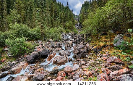 Mountain Stream Running In The Narrow Forest Gorge