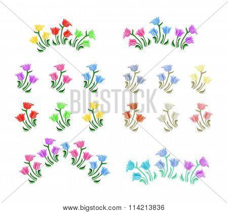 Tulips flowers