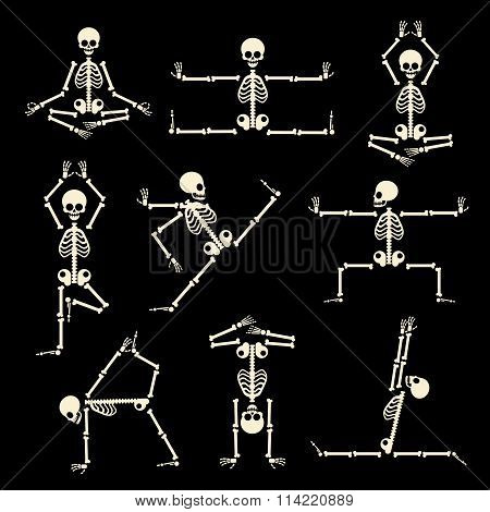 Kung fu and yoga skeletons vector set