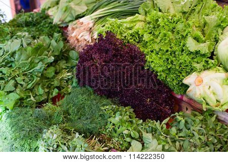 Fresh Greenery At Vegetable Market
