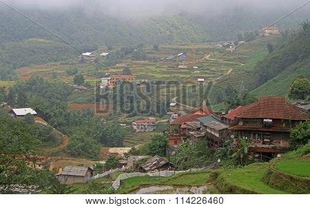 rice fields nearly Sa Pa town