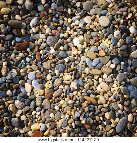 Colorful  pebble background