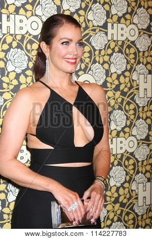 LOS ANGELES - JAN 10:  Bellamy Young at the HBO Golden Globes After Party 2016 at the Beverly Hilton on January 10, 2016 in Beverly Hills, CA