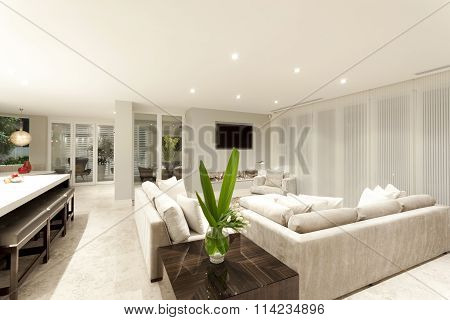 Spacious Gray Coloured Living Room