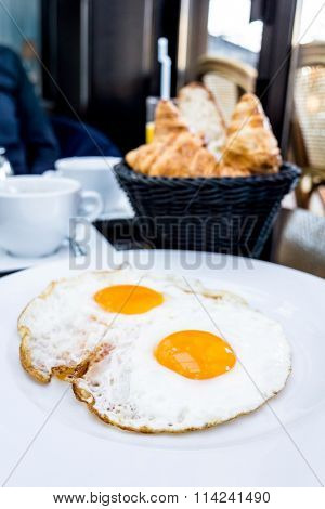 Prepared Egg - prepared egg under the sun