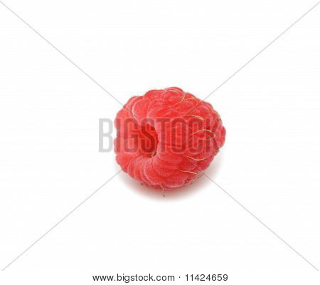 Raspberry, Isolated