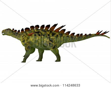 Huayangosaurus Side Profile
