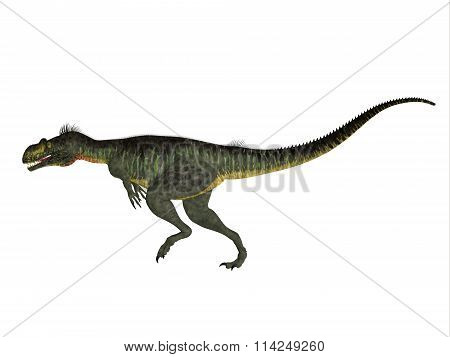 Megalosaurus Side Profile
