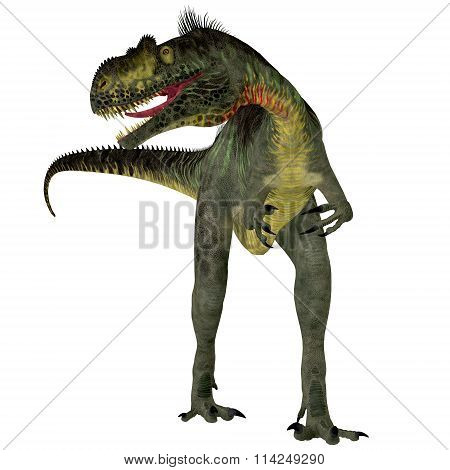Megalosaurus On White