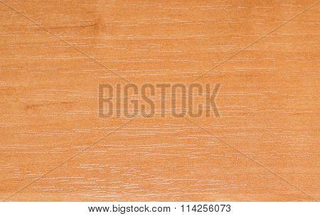 Background Texture Of Alder