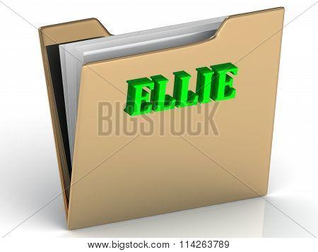 Ellie- Bright Green Letters On Gold Paperwork Folder