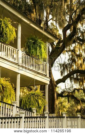 Classic Southern Architecture