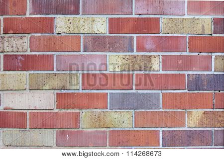 Colourful Brick Wall 1