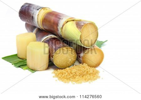 Sugarcane and brown sugar on white background.