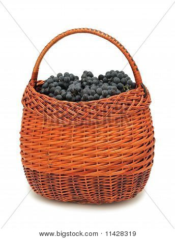 Fresh Grapes In A Basket, Isolated
