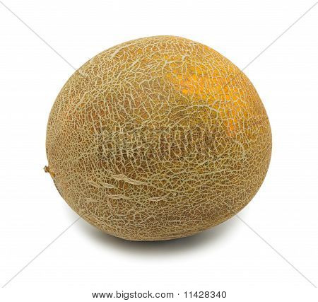 Whole Uzbek Yellow Melon, Isolated
