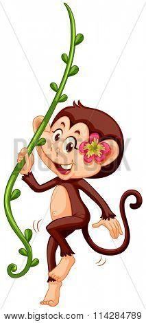 Cute monkey climbing the vine illustration