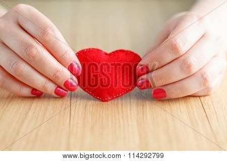 Heart In Hands, Female Holds Handmade Sewn Soft Toy