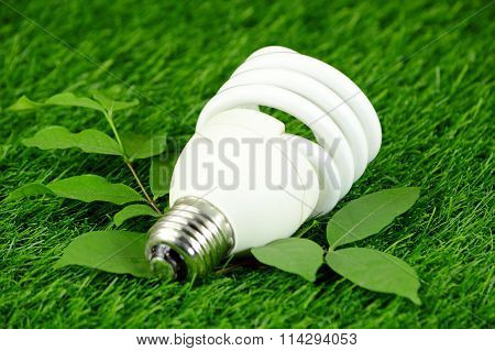 Energy Saving Light Bulb And Green Environmental Concept.
