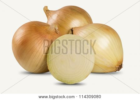 Assorted Farm Fresh Onions On A White Background.