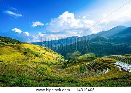 Rice fields on terrace in rainy season at La Pan Tan, Mu Cang Chai
