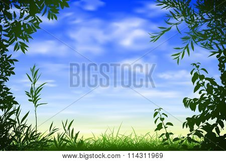 A Blue Sky Background with Floral Border and Leaves