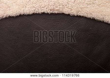 brown Leather with fur banner.