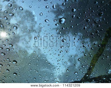 Drops of morning