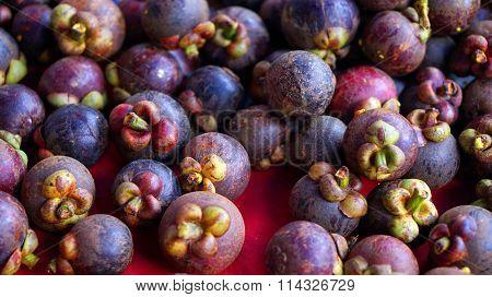 pile of mangosteen, queen of fruit