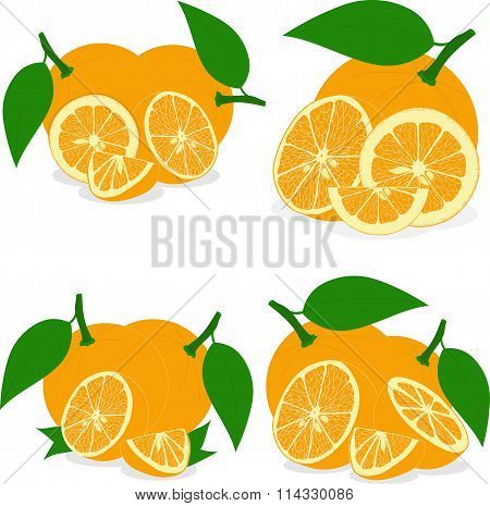 Orange slices, collection of vector illustrations on a transparent background