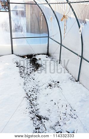 Soil Moisture In The Greenhouse By The Method Of Scattering Of Snow