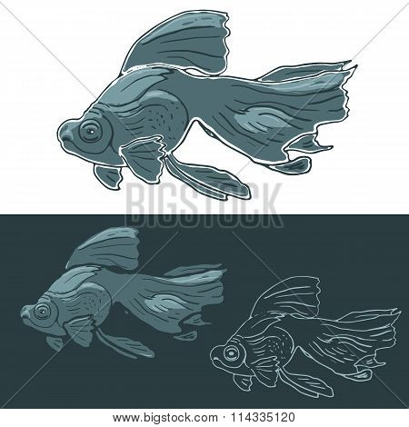 Black Moor Goldfish. Hand drawn vector set