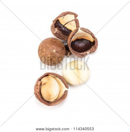 Macadamia Nuts On White Background , Overhead View