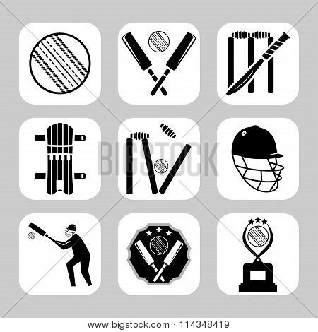 Vector Cricket Related Icon Set. Sport Icon.
