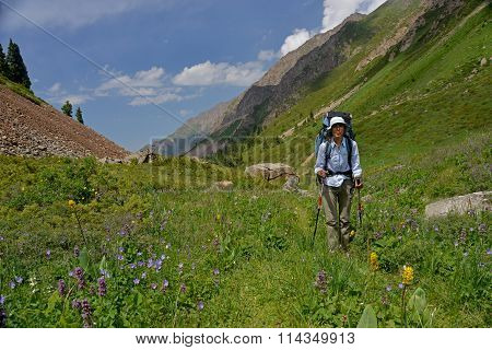 Vigorous Physical Activity During Trekking