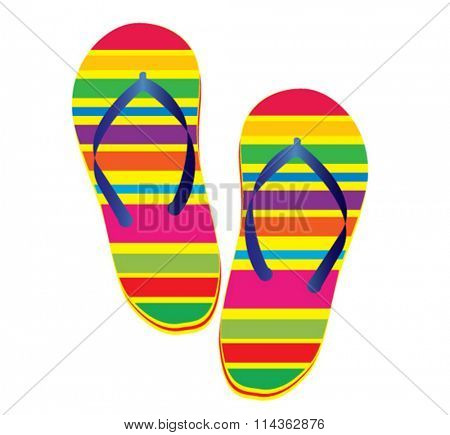vector illustration of pair of slippers