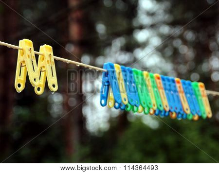Wet bright multicolored clothespins on the clothesline