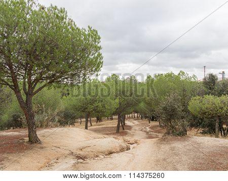 Spanish Park Casa De Campo, Madrid