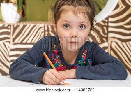 Preschooler Child Drawing