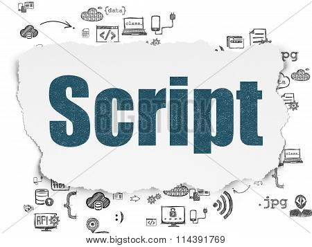 Software concept: Script on Torn Paper background