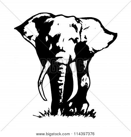 Elephant Abstraction Black 1