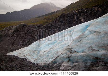 Exit Glacier,
