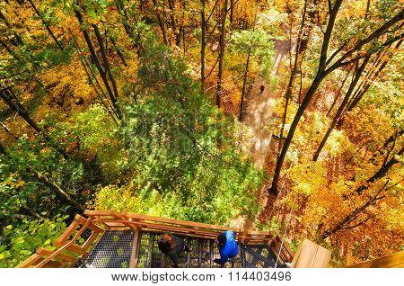 Autumn Tower Ascent