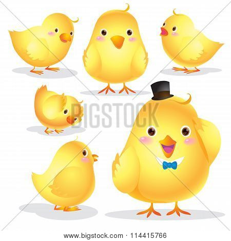 Cute Chick Cartoon