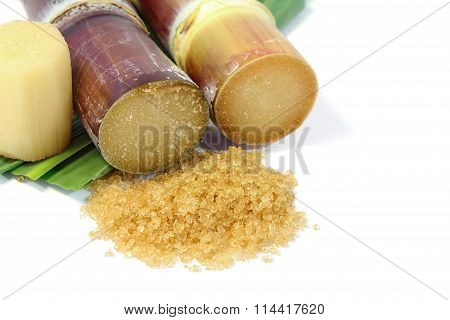 Brown sugar and Sugarcane .