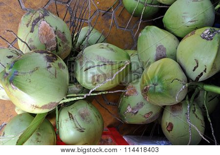 Fresh Coconuts In The Market