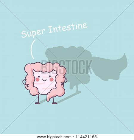 Super Health Intestine