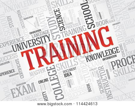 TRAINING word cloud business concept