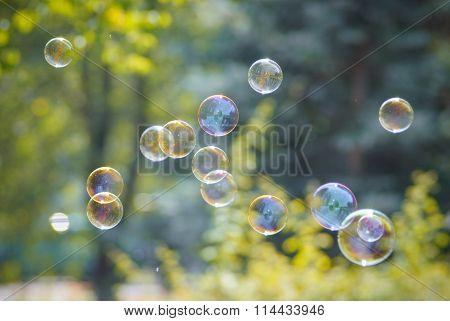 Photo Of Soap Bubbles